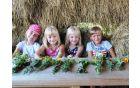 Otroci so nabirali zelišča iz katerih so nastali zeliščni šopki, foto Liljana Jantol Weber