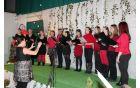 Pevski zbor nekdanjih učenk OŠ Vojnik