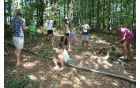 Naša gozdna steza