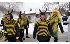 Kalske čebele. Foto: Tea Lipičar