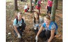 Raziskovanje gozdnih tal
