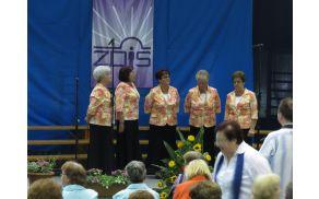 Nastop Ljudskih pevk Lastovk na Reviji pevskih zborov ZDIS
