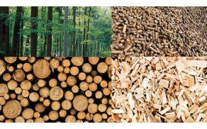 Biomasa je trajnosten energetski vir lokalnega izvora.