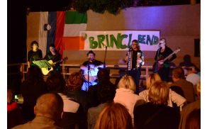Dekleta in fantje predstavljajo irsko glasbo.
