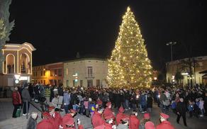 Razsvetljeno praznično drevo v Šempetru pri Gorici. (Foto: Foto atelje Pavšič Zavadlav)