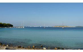 Kristalno čisto morje in okusna hrana: Murter