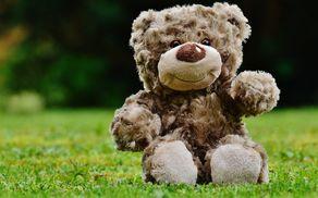1755_1504606731_teddy-1338895_1920.jpg