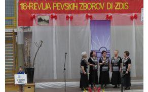 Nastop Ljudskih pevk Lastovk na Reviji pevskih zborov DI ZDIS
