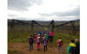 Obisk EKO kmetije Kastelic
