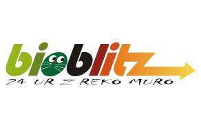 Bioblitz - 24 ur z reko Muro