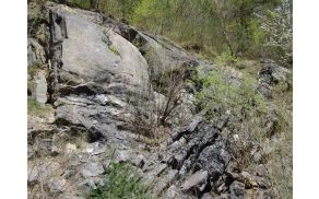 Nagubane, pretrte in razlomljene plasti črnega plastnatega apnenca z značilno karnijsko školjčno favno v Kuclerjevem kamnolomu na jugozahodnem obrobju Ljubljanskega barja (foto: S. Dozet)
