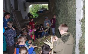 Tretješolci OŠ Frankolovo na kmetiji Žohar