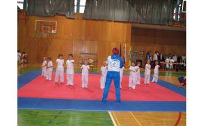 Predstavitev karate vrtca