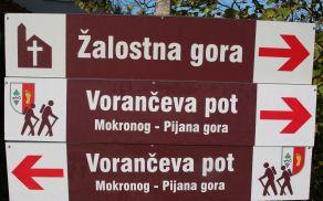Vorančeva pot