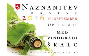Naj se trgatev v konjiških vinogradih prične!