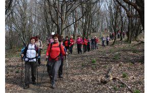 Z Velikega Gradišča proti Kokoši, po lepem gozdnatem grebenčku proti Krvavemu potoku... (foto: Sonja Zalar Bizjak)