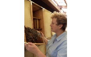 Čebelarka Marija Sivec. Foto: osebni arhiv