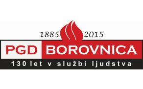 1_pgd_borovnica_logo.jpg