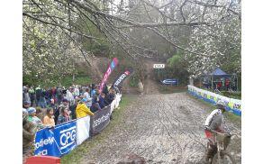 Deveti Downhill Avče je ponudil veliko vrtatolomnih voženj. Foto: Miha Jakopič