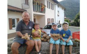 Obilna letina krompirja v Bodrežu. Foto: Marko Bucik