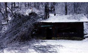 Žledolom v Mavčevi dolini je prizanesel le skladišču za stojnice.