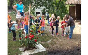 Bogato in spodbudno učno okolje je za otroka velik izziv.