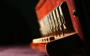 2_harmonika.jpg