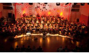 Koncert, 17. 1. 2015