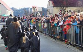 Obiskovalci karnevala