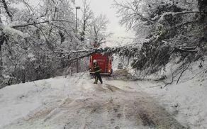 3160_1513322829_sneg-trbovlje-drevje2.jpg