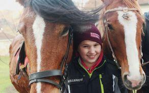 V zavetju pred hudim vetrom med dvema konjema
