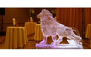 3195_1491919085_ledenaskulptura.jpg