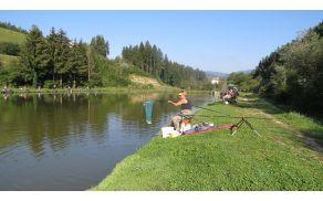 Ribiško tekmovanja članov in članic DI SG na ribniku Brdinje