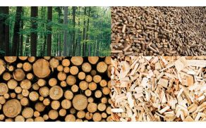 Biomasa (peleti in polena)  je trajnosten energetski vir lokalnega izvora.