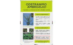 393_1531894189_plakat_ambrozija_tisk.page1.jpg