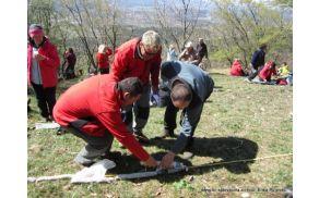 Merjenje skupne dolžine šalamov, 2012. Foto: Erika Pirjevec