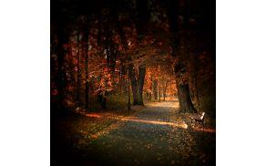 3_jesen.jpg