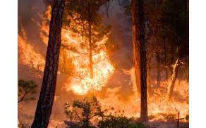 3_ogenj.jpg