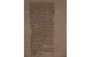 Bula papeža Celestina III. z dne 24. novembra 1192