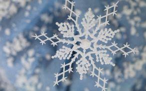 4242_1517565270_snowflake.jpg