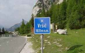 4440_1492073939_novicevri-cesta.jpg