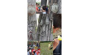 5023_1504155435_collage2017-08-1108_12_51.jpg