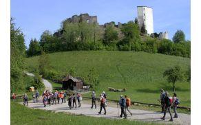 Razvaline enega najstarejših gradov v Sloveniji, Konjiškega gradu, zgrajenega v 12. stoletju (foto Tatjana Rodošek)