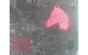 Markacija - konjska glava rdeče barve. (Foto: Osebni arhiv)