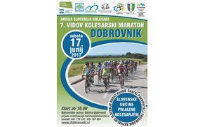 6331_1497003855_vidovmaraton2017.jpg