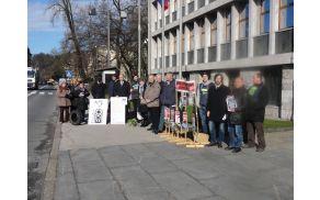 Protestniki pred parlamentom, foto: arhiv društva EKO Anhovo in dolina Soče