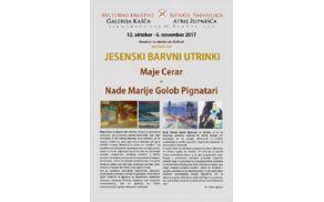 7373_1507741559_razstava-cerar-golob-okt2017.jpg