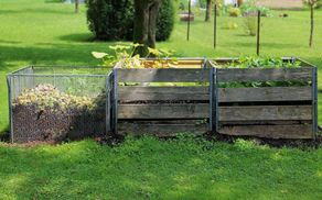 7751_1511002315_compost-419261_1920.jpg