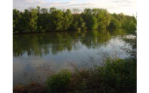 O sanaciji Drave so bodo decembra pogovarjali tudi s predstavnico Agencijo RS za okolje Matejo Klaneček. Slika je simbolična.