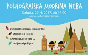 911_1491998929_modrina3.jpg